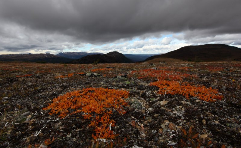Horseshoe Mountain <br> (HshoeBsn091610-222adj.jpg)