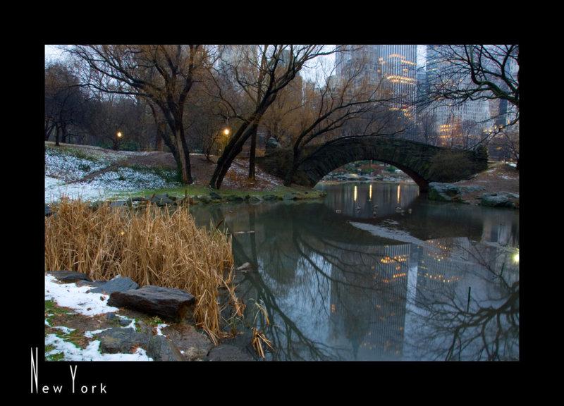 Morning Walk in Central Park_D2B3955.jpg