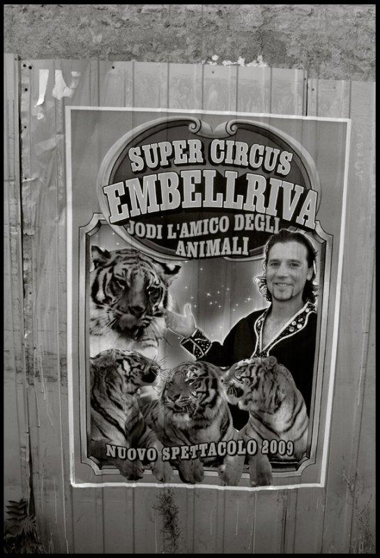 Super Circus Embellriva