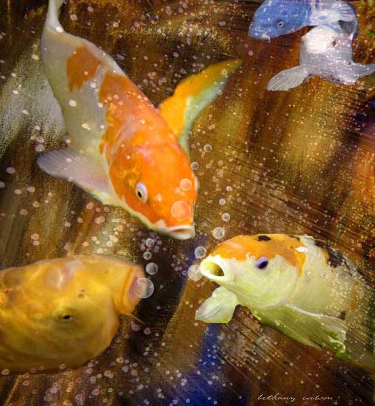 fishy gossip