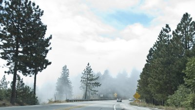 Mystical  Weather