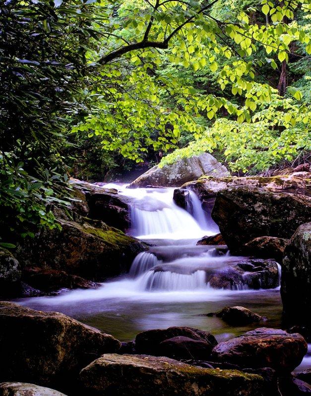 A long the trail.,Little Stony Creek