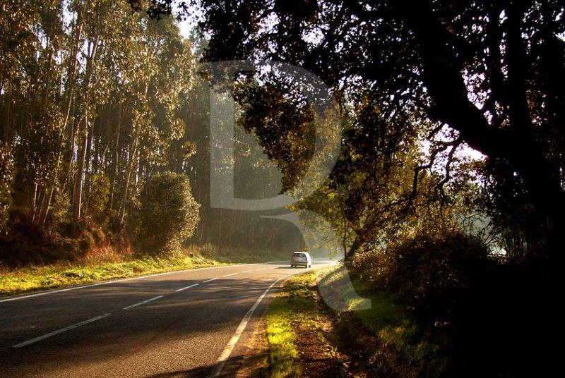 Roads of Portugal