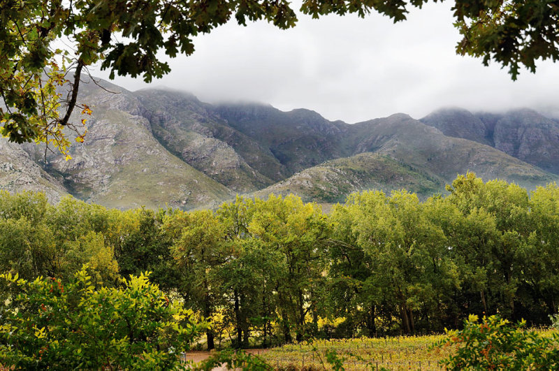 Paarl Mountains Wine Country