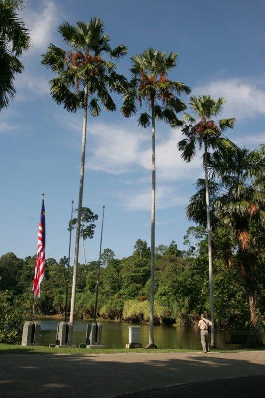 Rainforest Discovery Centre