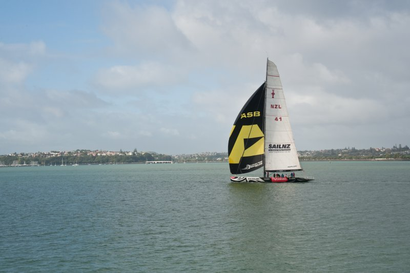 Sailing Auckland