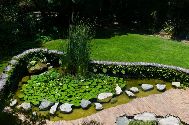 Gamble House Pond