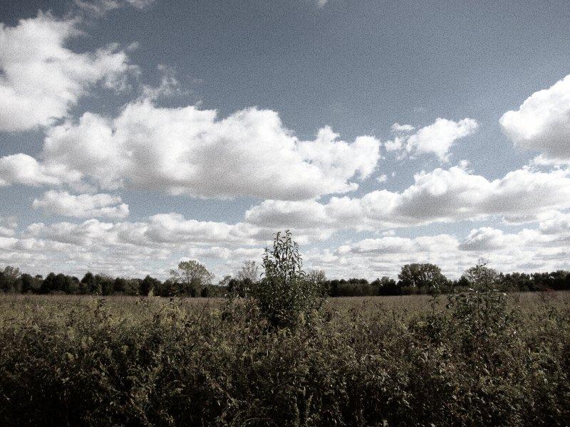 Meadowbrook Clouds