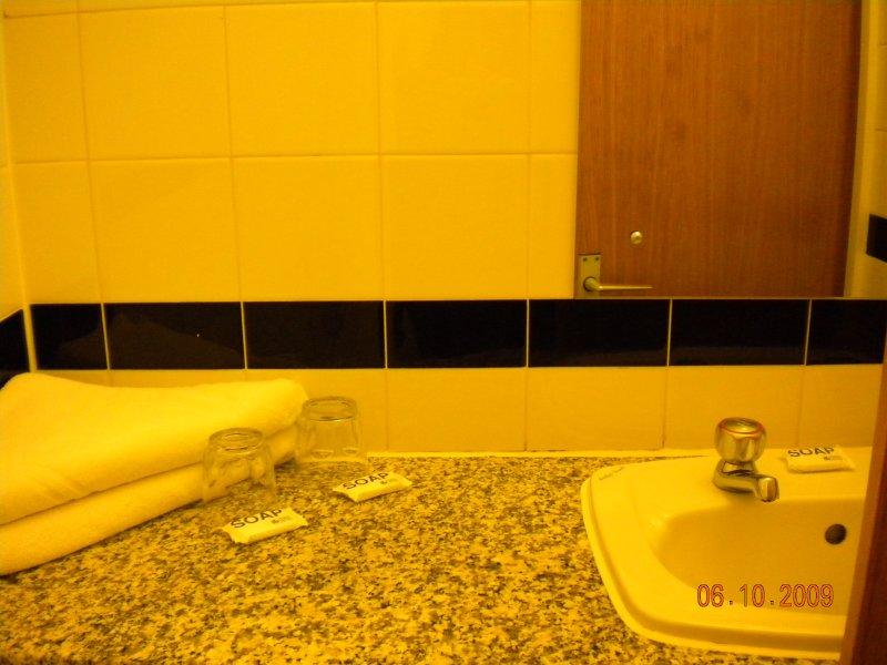 the bathroom sink.jpg