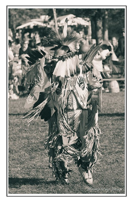 Tennessee State Pow Wow 2008