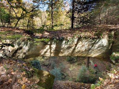 Ladd Natural Bridge