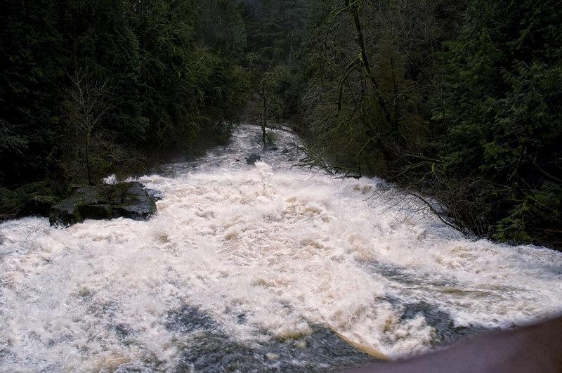 Lacamas Creek from the Bridge