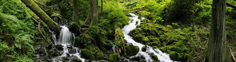 Wakeena Creek Pano