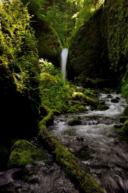 Lower Ruckel Creek Falls