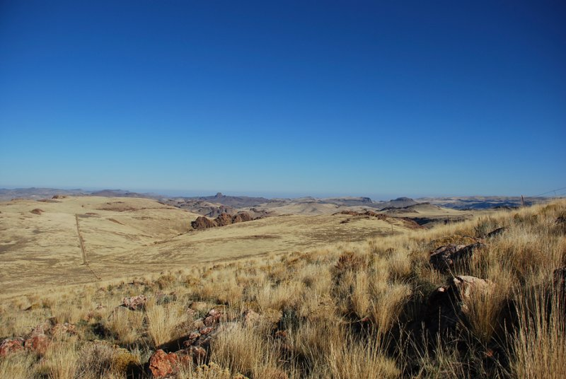 Fence line on the Owyhee