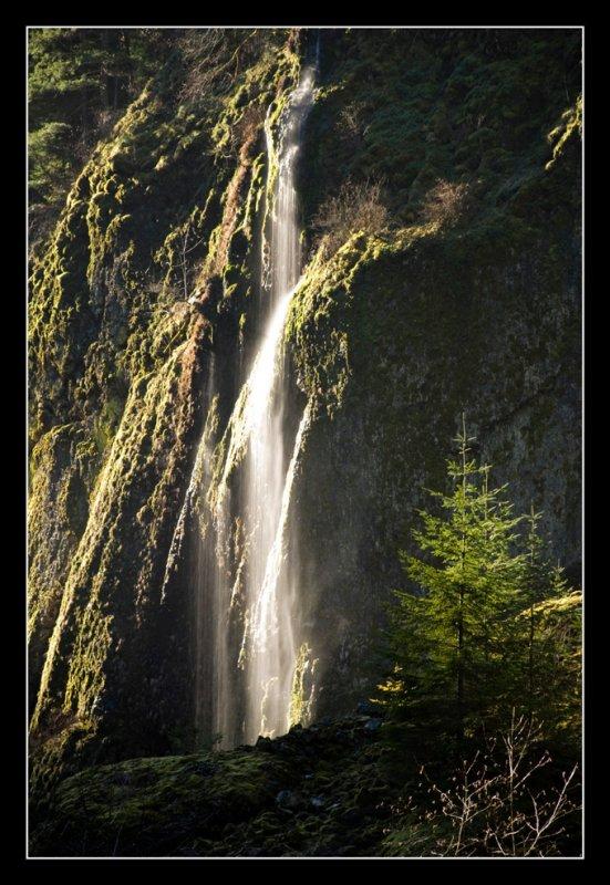 Small Waterfall on Wahclella Falls Trail