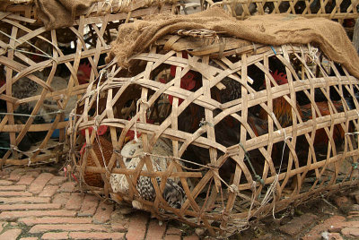 Chicken in a Basket Bhaktapur
