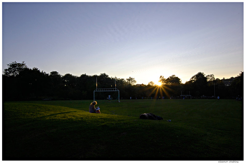 Summer Fades, Westmount Park, Montreal