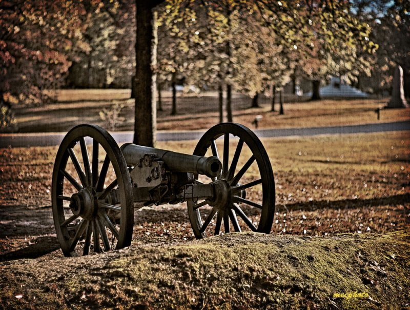 An Old Cannon