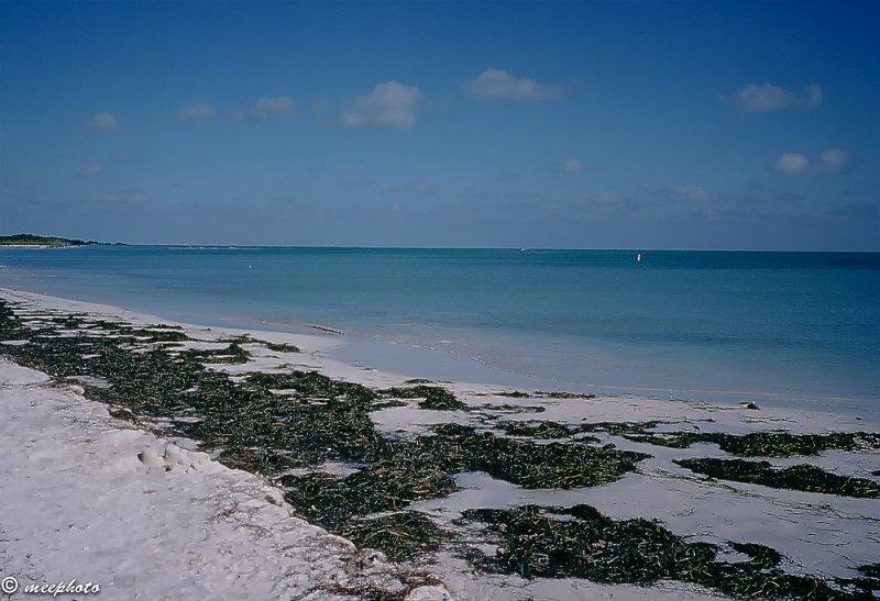 The Beach at Bahia Honda