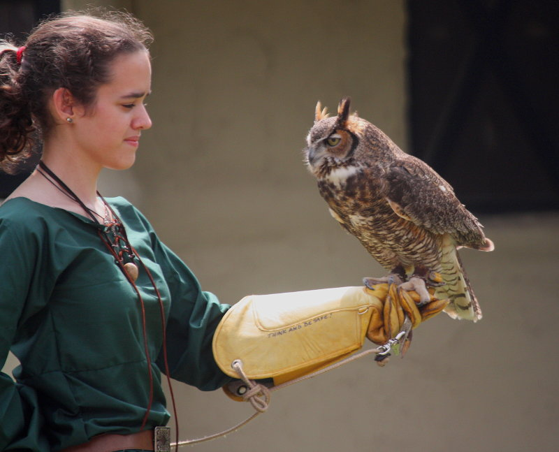 A GIRL AND AN OWL