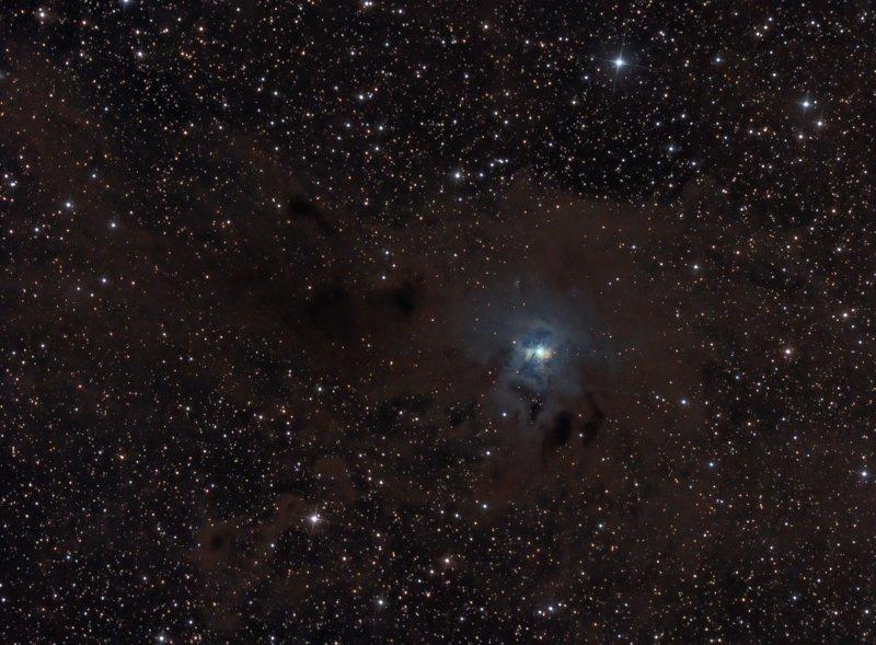 NGC7023 vdB139 C12 The Iris Nebula in Cepheus (1300 pixels)