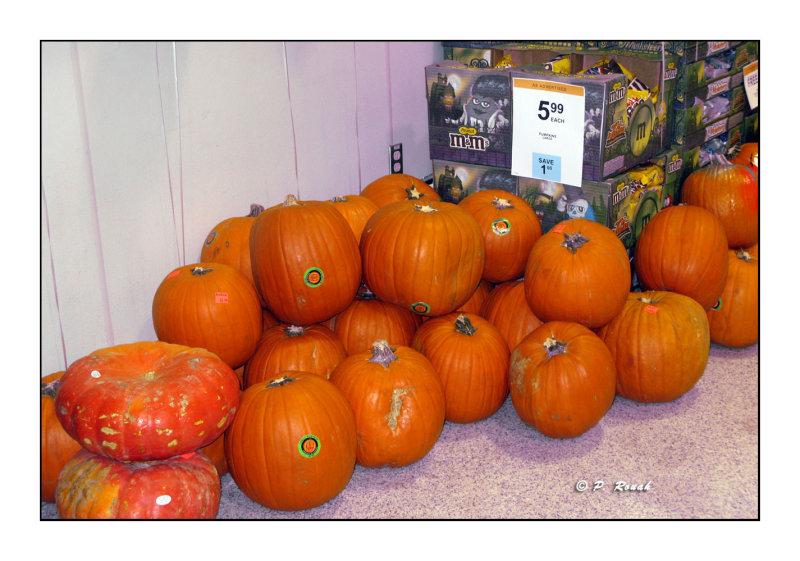 Halloween is coming - 3252