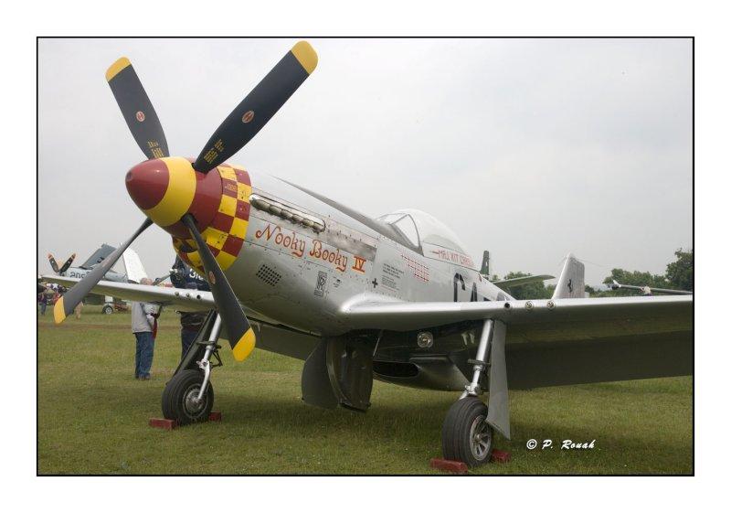 La Ferté Alais 2008 - P-51 - 2118