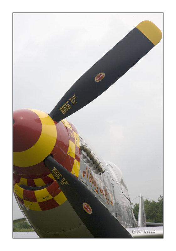 La Ferté Alais 2008 - P-51 - 2122