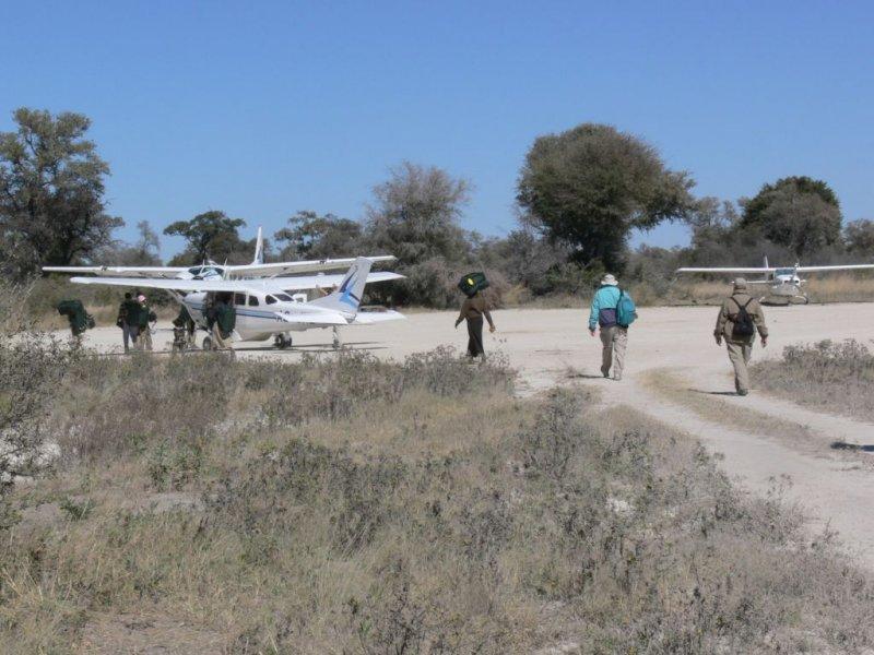 Heading Off for the Okavango Delta