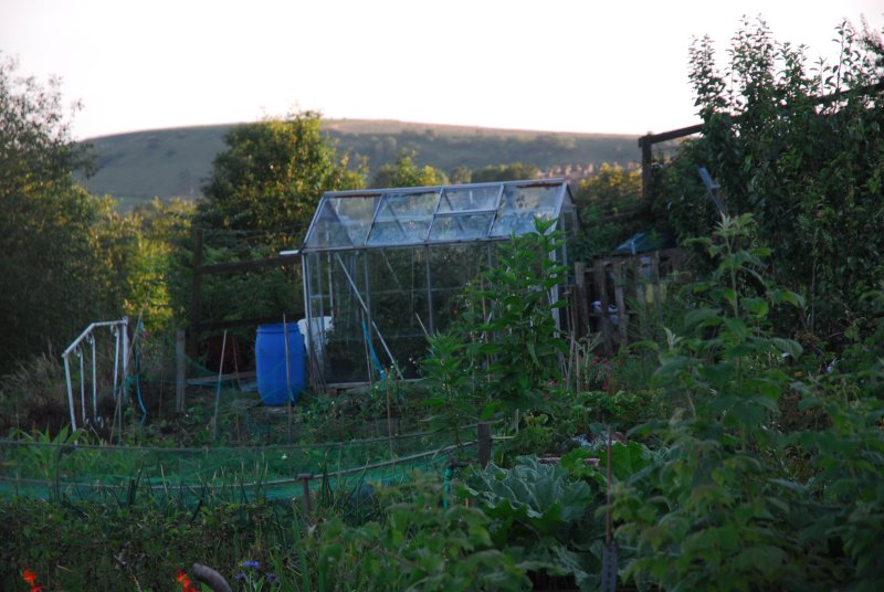 Allotments in Roughtown Mossley