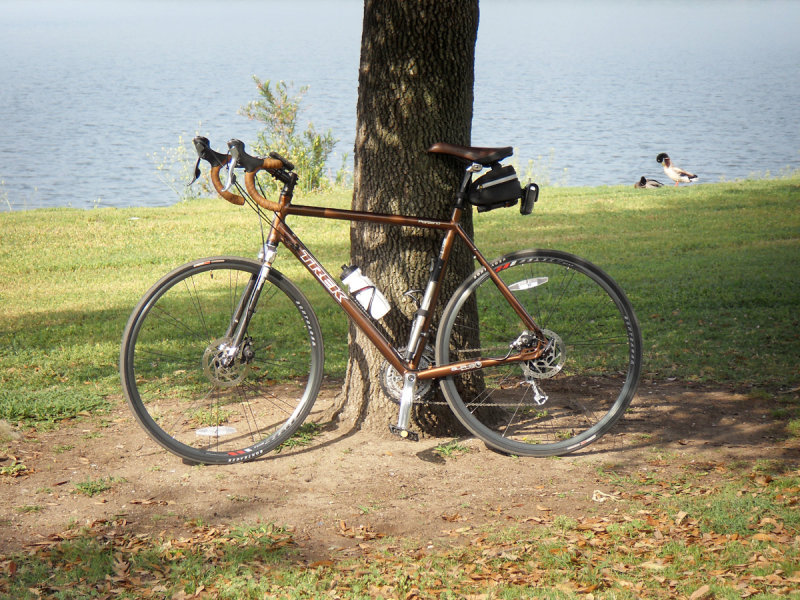 My Bike and some fauna at a local Lake.jpg