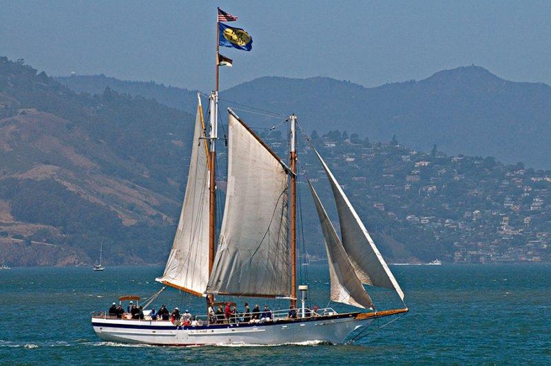 San Francisco Sailship Parade_1437.jpg