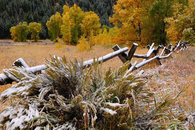 Autumn Snow in Buckrail Country.jpg