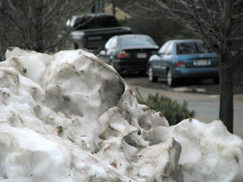Snow Sculpture.jpg