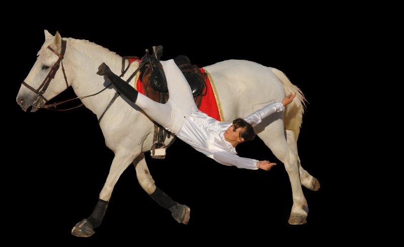 equestre