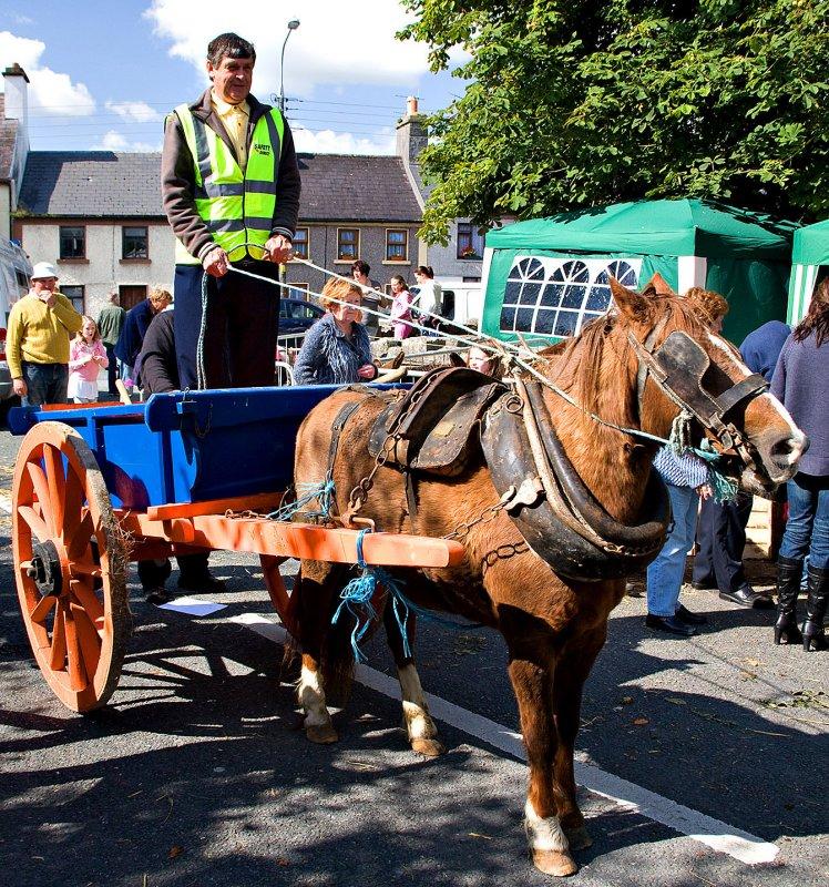 Horse + Cart 3