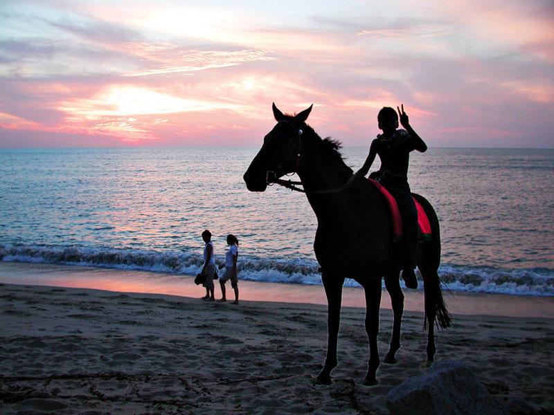 16-May ... Beach Horseman