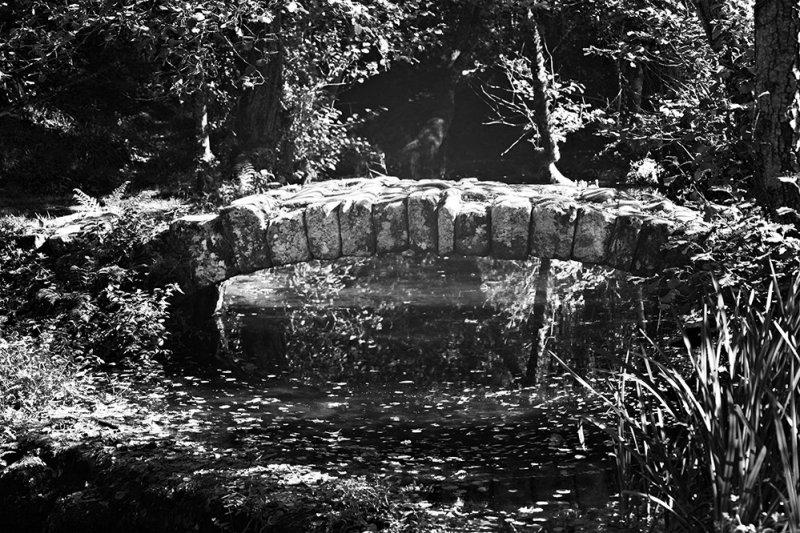 Ancient Roman Bridge