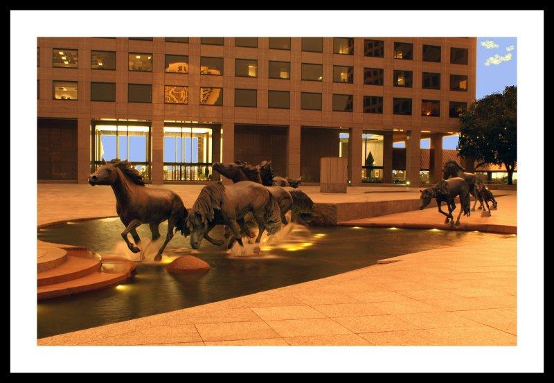 Mustangs1Frame.jpg