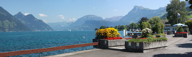 Buochs with Lake Lucerne