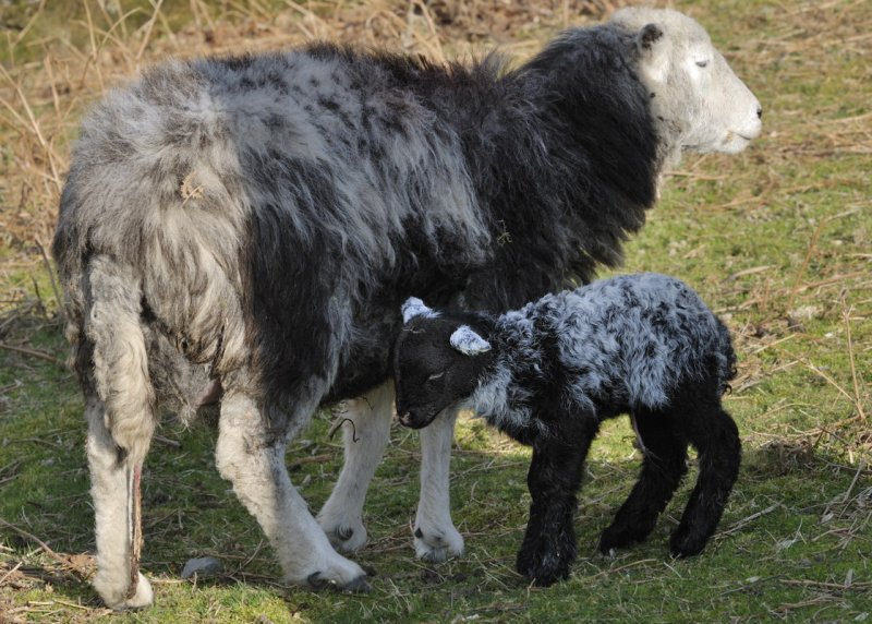 ...and with mum