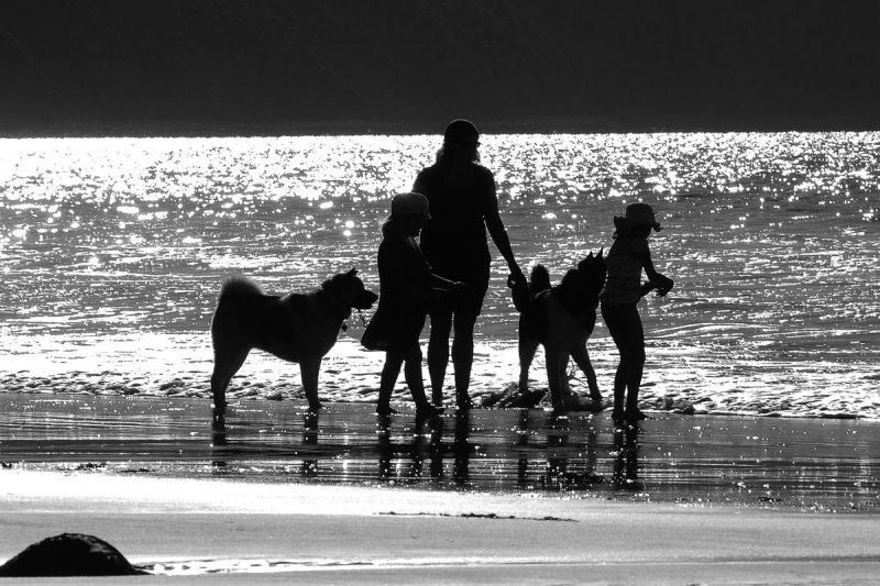 on Peppercombe beach