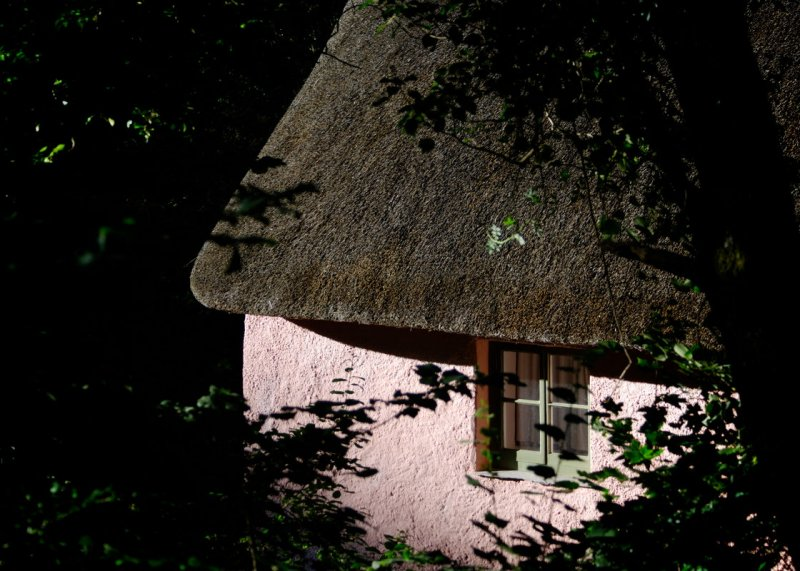 cottage in Peppercombe valley