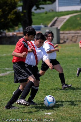 soccer-6.jpg