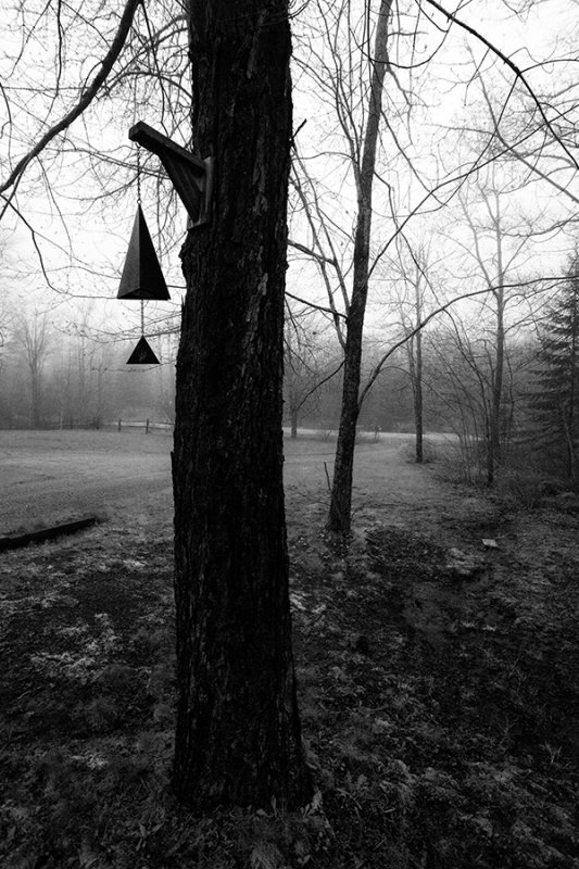 Foggy Evening on the Border: Buoy Bell