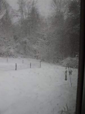 Bird Feeder and Garden in Late Winter Storm