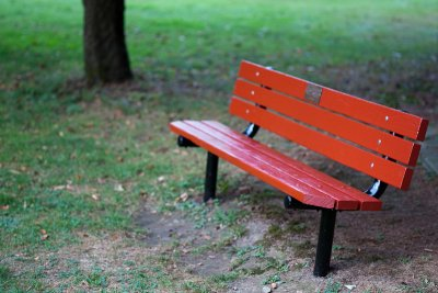 Childs Park Bench