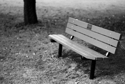 Childs Park Bench Monochrome