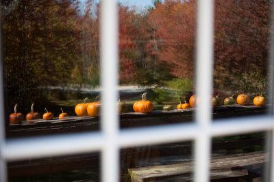 Railing Pumpkins Reflection